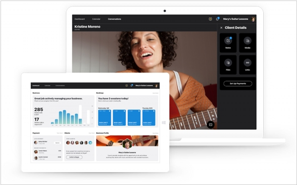 Skype introduced Professional accounts