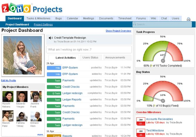 zoho project Zoho projects is a cloud-based project management solution designed for small and midsize companies it offers project scheduling and budgeting, which allows project.